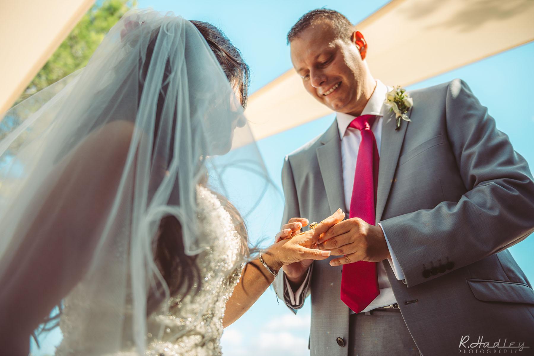 Wedding | Almiral de la Font